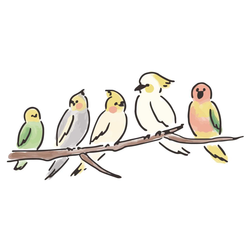 鳥たちとおもてなしする洋館風レストランウェディング